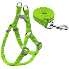 Polka Dot Nylon Pet Dog Harness and Walking Lead Leash Durable for Small Dogs
