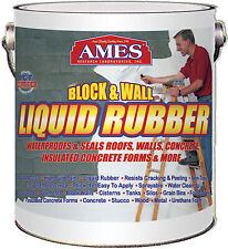 Block & Wall Liquid Rubber Coating, White, 1-Gal.