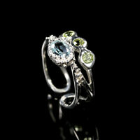 Natural Blue Topaz 925 Sterling Silver Ring Size 6/RR17-1358