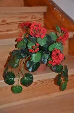 Geranie, Textilpflanze im Topf, ideal beim nicht so grünen Daumen ;), sehr gut!