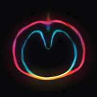 "XTC : Apple Venus: Wasp Star - Volume 2 VINYL 12"" Album (2018) ***NEW***"