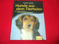 Claudia Ludwig - Hunde aus dem Tierheim - Ein neues Zuhause für herrenlose Tiere