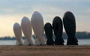 The Spomb / Spod Bomb Bait Rocket / Mini Midi Std White & Black / Carp Fishing