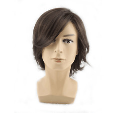 Handsome New Short Wig Anime Boys Cosplay Wigs Dark Brown Male Hair Sexy Men's
