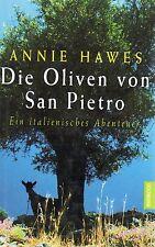 DIE OLIVEN VON SAN PIETRO - Ein italienisches Abenteuer - Annie Hawes GEBUNDEN
