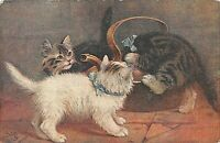 POSTCARD CATS   CATLAND  AT  PLAY  -  TUCK