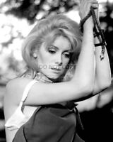 "CATHERINE DENEUVE IN THE 1967 FILM ""BELLE DE JOU""  8X10 PUBLICITY PHOTO (BB-053)"