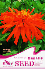 1 Pack 50 Youth-And-Old-Age Seeds Zinnia Orange Chrysanthemum Zinnia A233