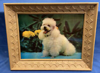 Vintage Anderson 3D Lentograph Poodle Flowers 124 Retro Universal Statuary Frame