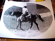 Arabian Horse Show 1971 Calgary Canada Unknown Rider & Horse 8 x 10 Photograph