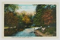 Postcard Greetings From Averill Park New York Family Hanging Out Creek Side