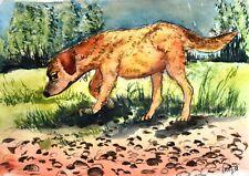 """Aquarell Original """"Schnüffelhund""""  Kunstwerk ca. 20x28cm"""