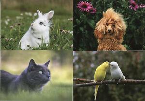 Aland Pets 2020 Pre-Paid Postcards Postal Stationery Cats Dogs Rabbits 4v Set