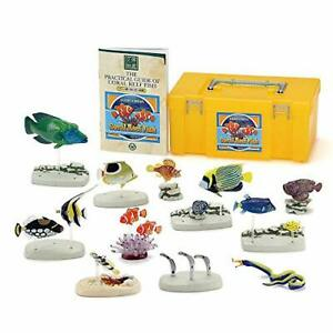 COLORATA Real Figure NATURE'S LIBRARY Coral Reef Fish BOX w/ Tracking NEW