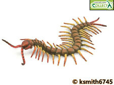 CollectA CENTIPEDE plastic toy wild farm animal insect bug  NEW 💥