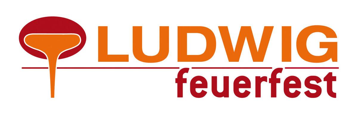 ludwigfeuerfest_kaminfix