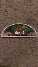 """BLACK HILLS AREA  COUNCIL 2010 TROOP 901     2""""X 5""""  IRON ON PATCH NICE !"""