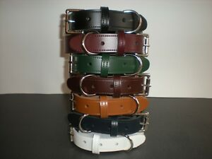 Real leather dog collars with heavy duty buckle 8 colours available 25mm  TR2