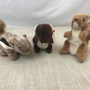 Ty Beanie Babies Rodents Lot Of 3 Squirrel Weasel Chipmunk Runner Chipper Nuts