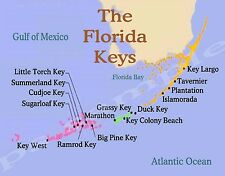 Florida - KEYS - Travel Souvenir Flexible Fridge MAGNET