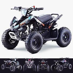 49cc Petrol Kids Mini Quad Bike 2 Stroke Petrol Quad ATV - OneQuad™   PX1S