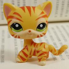 Orage Tiger Short Hair Cat #1451  Littlest pet shop LPS Action Figures