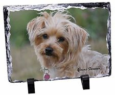 Yorkshire Terrier 'Yours Forever' Photo Slate Christmas Gift Ornament, AD-HV2ySL