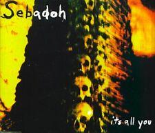 Its All You - SEBADOH
