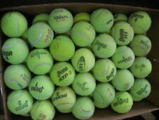 112 USED TENNIS BALLS Name Brand for Toy, Dogs, Furniture Protection!