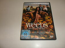 DVD   Weeds - Kleine Deals unter Nachbarn, Season Two