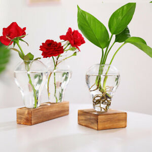 Glass Tube Vase Wooden Stand Flower Pots Hydroponic Plant Home Garden Planter