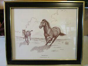 Framed Mare and Colt Pencil Sketch Print by Artist F.W. Davis