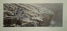 snow leopard by anthony gibbs limited edition