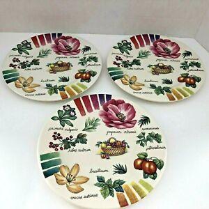 "Italian Floral Desert Bread Plate Italy Harvest of Fruits Herbs 8.25"" dia"