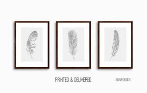 Grey Feather Prints, Home Wall Decor Art, Set of 3 Sketched Minimal Line Art set