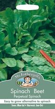 Mr Fothergills - Vegetable - Spinach Beet Perpetual Spinach - 250 Seeds