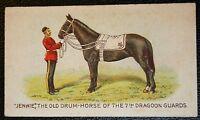 7th DRAGOON GUARDS  War Horse   Boer War    Superb Original 1911 Vintage Card