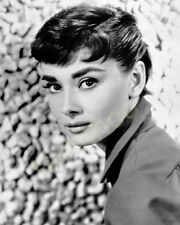 Audrey Hepburn 8x10 Photo 120