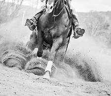 Reining In by Lisa Cueman Horse Western Print 27x27