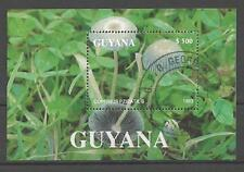 Champignons Guyane (28) bloc oblitéré