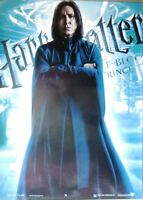Harry Potter-Half Blood Prince-Professor- Poster-Laminated available-100cm x ...