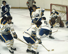 Buffalo Sabres French Connection - 8x10 Color Action Photo