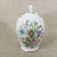 Aynsley Wild Tudor Caramelle Barattolo Zenzero Dolci e Inglese Porcellana