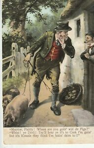 a irish life eire old postcard ireland taking pigs to kinsale cork
