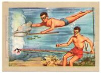 Divers With New Fishing For Small Colorful Fish  Vintage Trade Ad Card