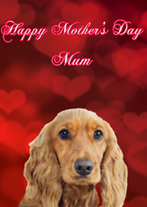 Cocker Spaniel Dog MDH18 Cute Mother's Day Card a5 Personalised Greetings