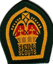 Boy Scout Badge 1960`s repro SENIOR SCOUTS QUEEN Scout Award