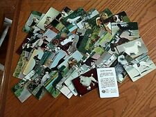 1950 Hood Ice Cream Dog Trading Cards 36 different original in Excellent+ 7/19-1