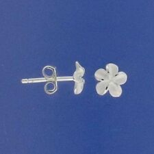 Sterling Silver White Frangipani Flower Studs Earrings 6mm Small Wedding 925 NEW
