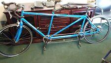 Landshark custom tandem steel bicycle